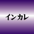 【2013インカレ】準決勝vs青山学院大~1年かけてたどり着いた最後の試練 見事勝利し残るは「頂点」へ!!~PhotoGalley掲載~